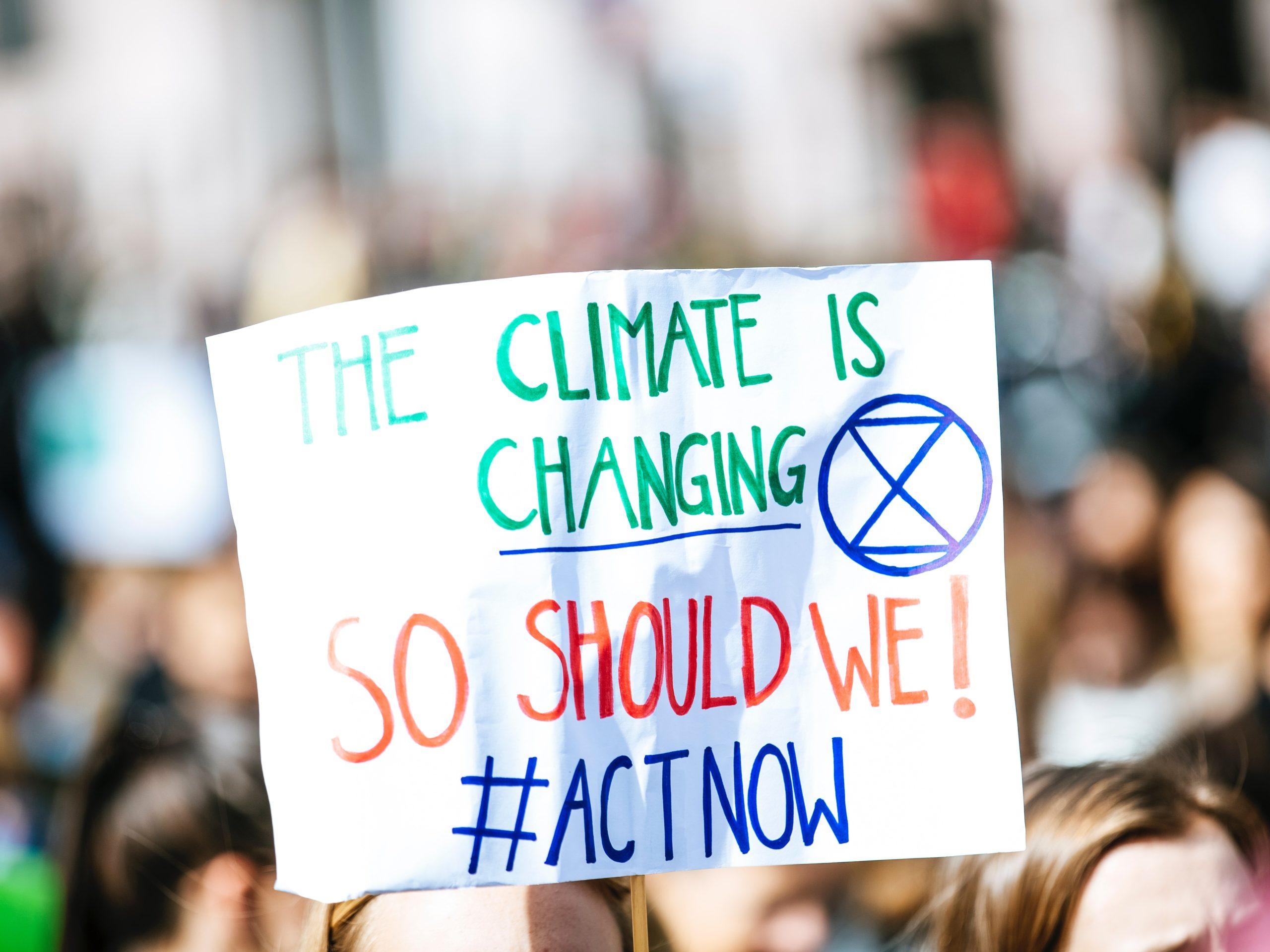 Klimaatspijbelaars als voorbeeld van burgerparticipatie