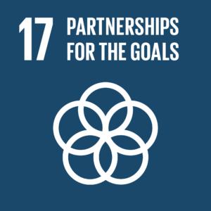 SDG goal 17